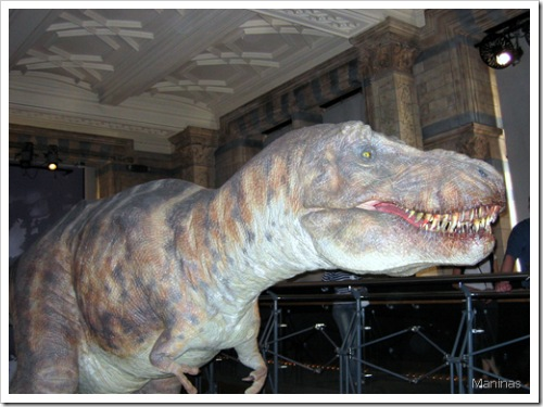 Dinosaur, British Museum